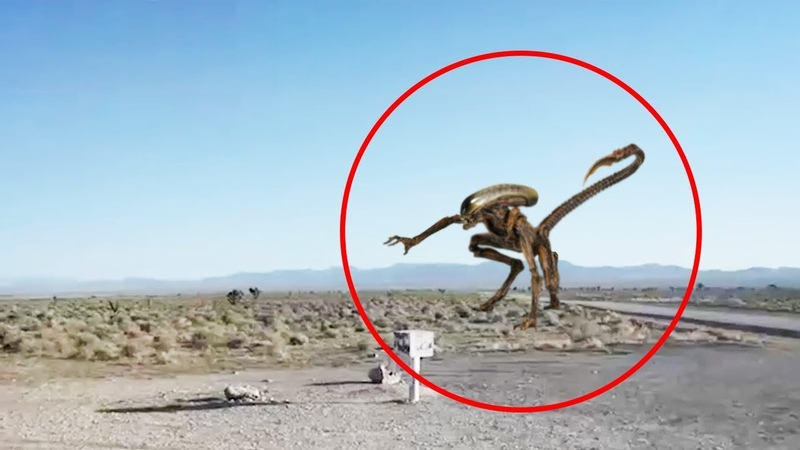 5 ALIENS CAUGHT ON CAMERA SPOTTED IN REAL LIFE! 3