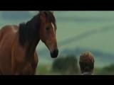 Виталий Черницкий - Я подозвал коня