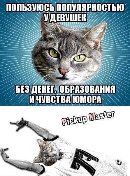 http://cs320322.vk.me/v320322306/651a/a-hn28Bs1PA.jpg