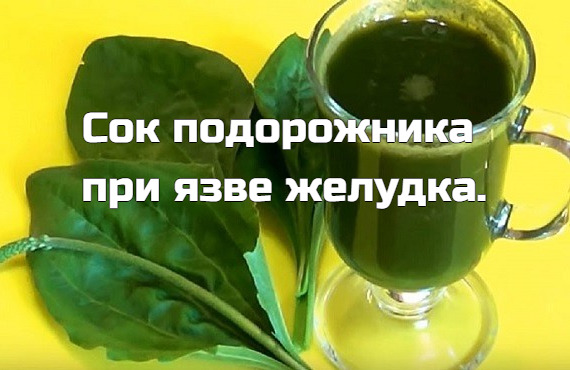 Мужчина пил сок подорожника по 1 ст. л. 3 раза в день до еды. Пил долго