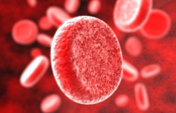 Интересное о крови человека Одним из важных составляющих человеческого организма является, конечно же, кровь. У взрослого человека сердце за день перекачивает её около 10000 литров! Несколько
