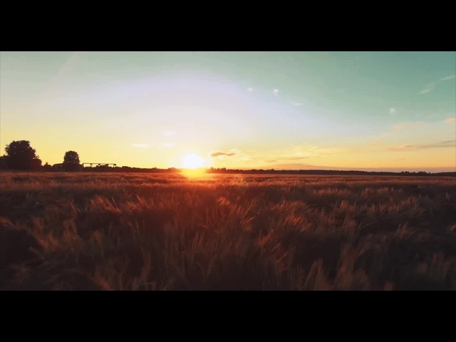 Sunset over the field (Flixel)