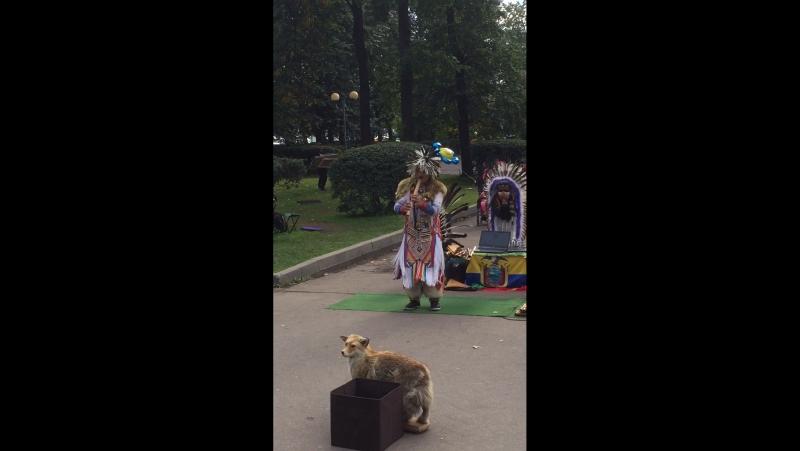 Индейцы в Москве