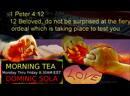Morning Tea With Dominic Sola 703 Suffering 1 Peter 4:12 Jesus Bible Prayer