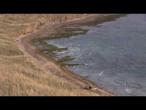 Керченский пролив обмелел ! Жуковка.Аномально отошло море.28.10.2018.