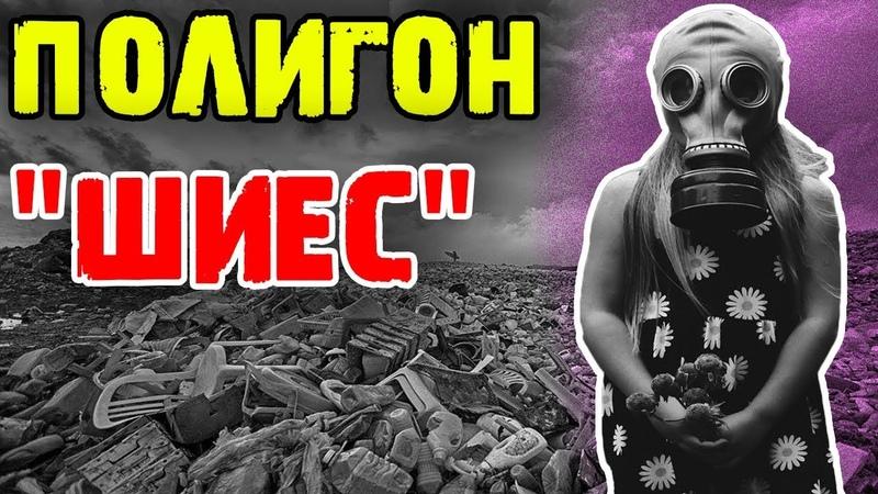 Мусорная обстановка в Шиесе | Ветерана лишили пенсии | Жизнь в России