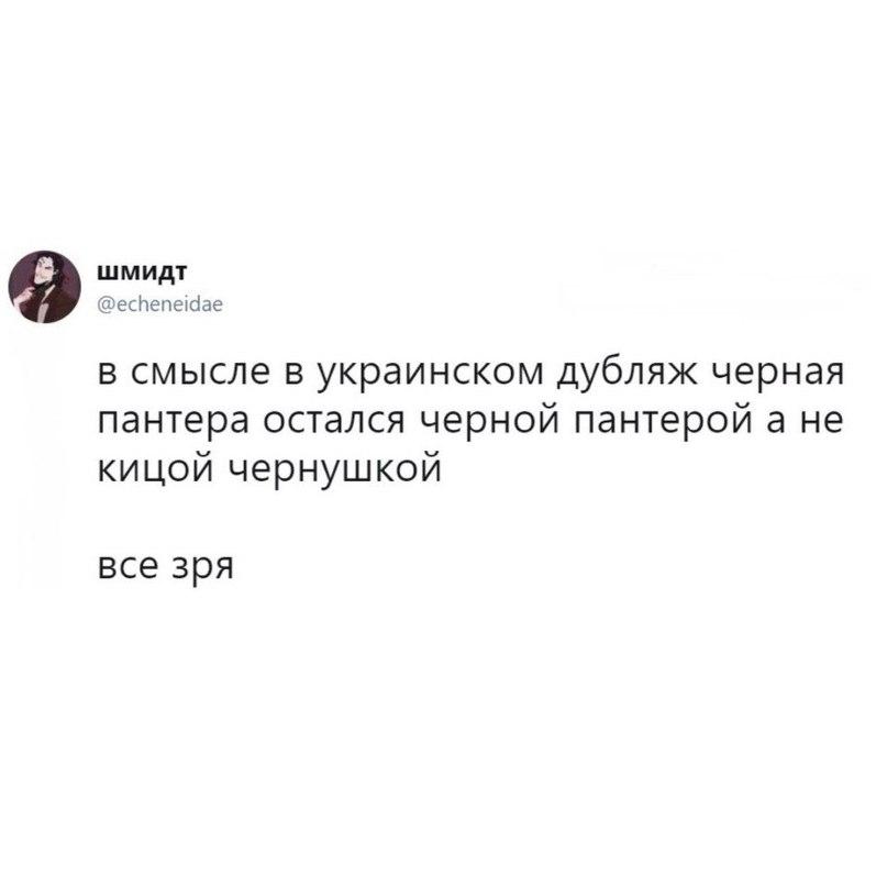 https://pp.userapi.com/c543107/v543107468/54884/hKuiP5d2OHg.jpg