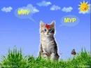 Как разговаривают животные-развивалки для детей