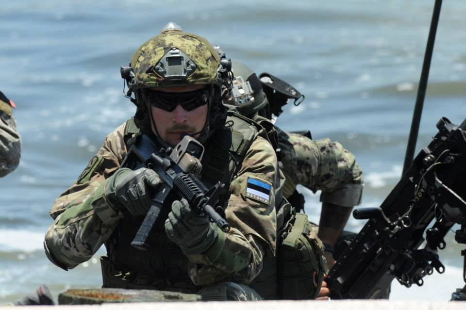 Armée Estonienne/Estonian Army - Page 2 DlMy9iqvokw