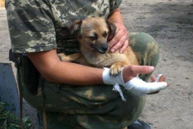 В МВД заявили о сокращении потока российских наемников на Донбасс - Цензор.НЕТ 3351
