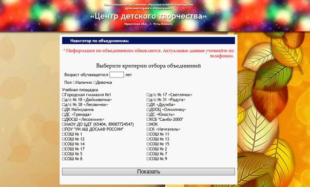 В Усть-Илимске запущен интернет-навигатор по подбору детских кружков по интересам