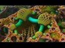 3D Fraktal Video 147
