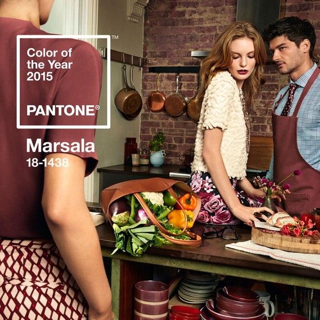 Самый модный цвет-2015 по версии Pantone Color Institute. Pantone+Marsala.