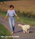 Благоговение – чувство, испытываемое человеком к Богу и собакой к человеку.