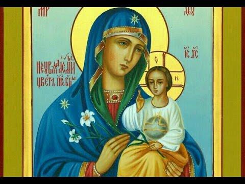"""16 апреля празднование Иконы Божией Матери """"Неувядаемый Цвет"""". История образа."""