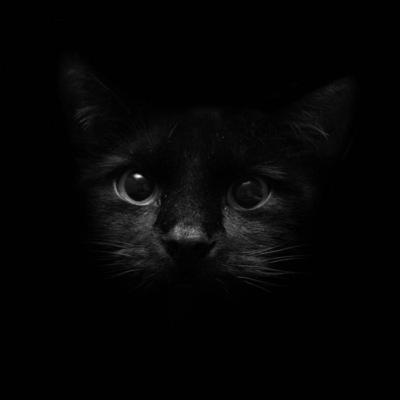 Black Shadow, 1 апреля 1987, Нижний Новгород, id205214709