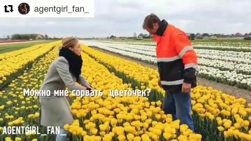 Настя Ивлеева мистер цветочник