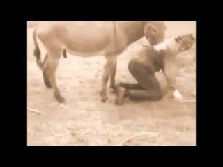Секс узбек ослы