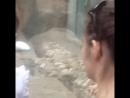 Московский Зоопарк2018