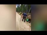 Медведя с канистрой на голове разыскивают в Якутии