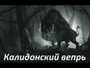 Assassin's Creed Odyssey Прохождение игры Богини за охотой Калидонский вепрь
