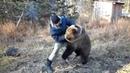 Греко русская борьба с медведем
