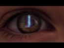 Трейлер К Фильму Закат человечества