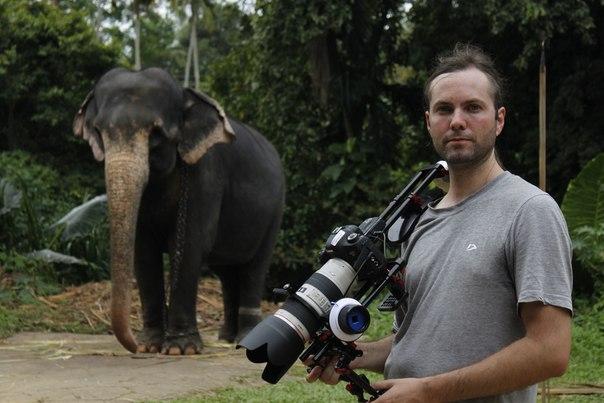 Командировка в Шри- Ланку