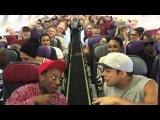 Король Лев - флешмоб в самолете