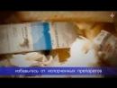 Что делать с аптечкой после наводнения