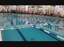 Плавание Полярный фото - Live