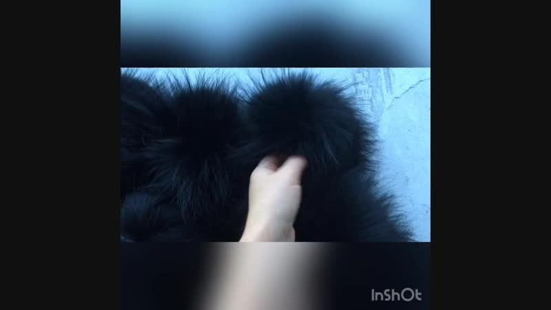Помпоны-чёрный енот