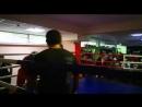 Школа Бокса Барс на спаррингах 🥊☝️