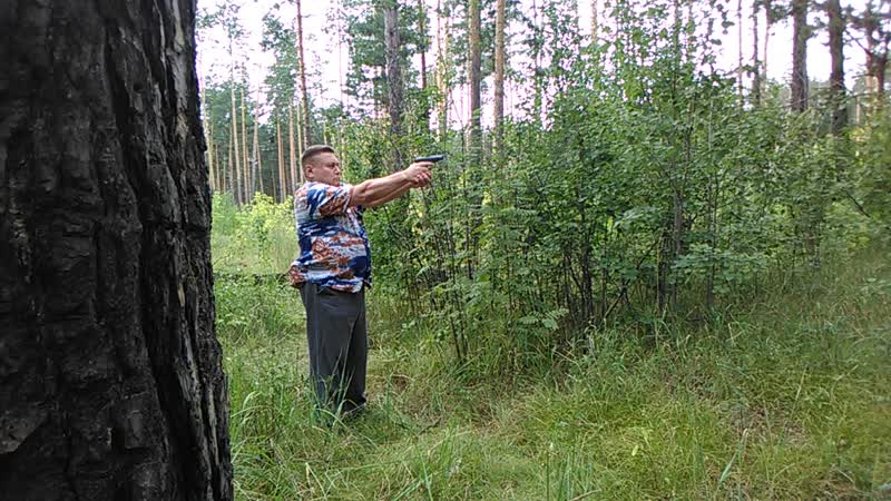 Выстрел в лесу