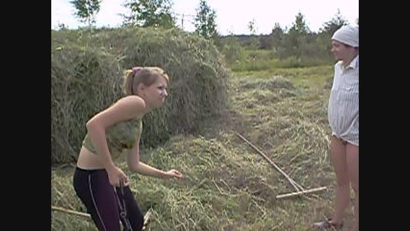 Сенокос 2007(2) (поле у дороги)