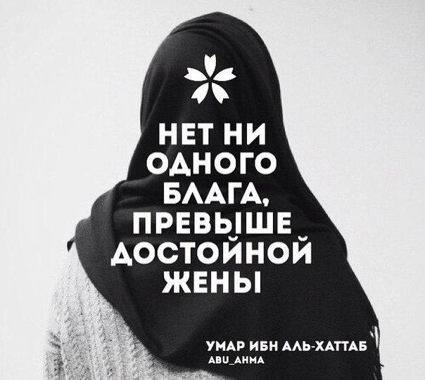#abu_ahma