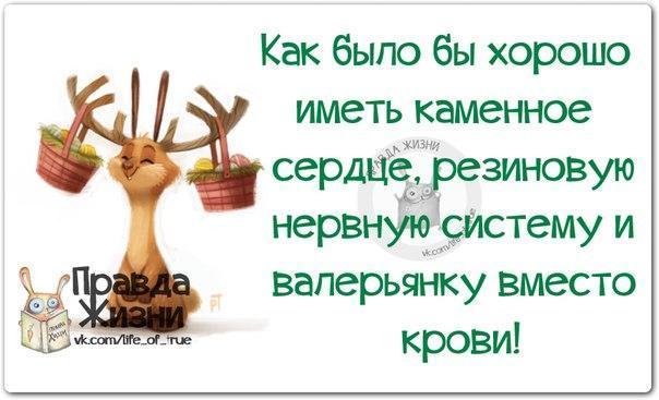http://cs543105.vk.me/v543105123/16bf8/uG0IVt2Tn00.jpg