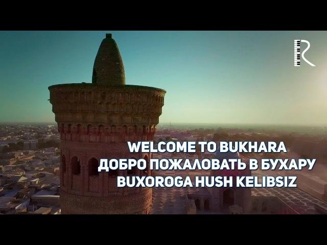 Welcome to Bukhara   Добро пожаловать в Бухару   Buxoroga hush kelibsiz