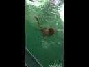 XiaoYing_Video_1533622702664.mp4