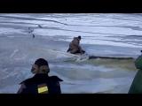 Как волна ломает лёд под рыбаками...
