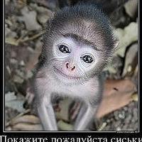 Илья Кирбуц, 2 августа 1999, Калининград, id142270508