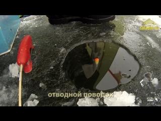 Зимние поклевки подлещика_ классический поплавок, отводной поводок, мормышка [sa
