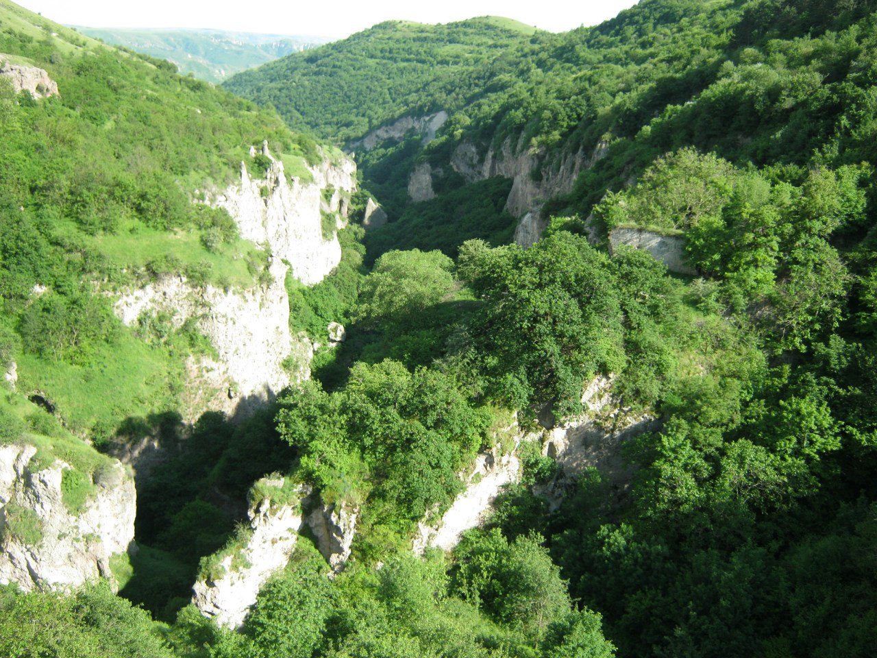 Вид на каньон с подвесного моста в Хндзореске