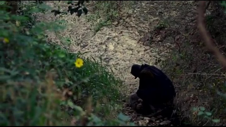 Эхо войны (2015) - триллер, драма, Вестерн