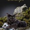 "Питомник кошек породы мейн кун ""Альгеро"""