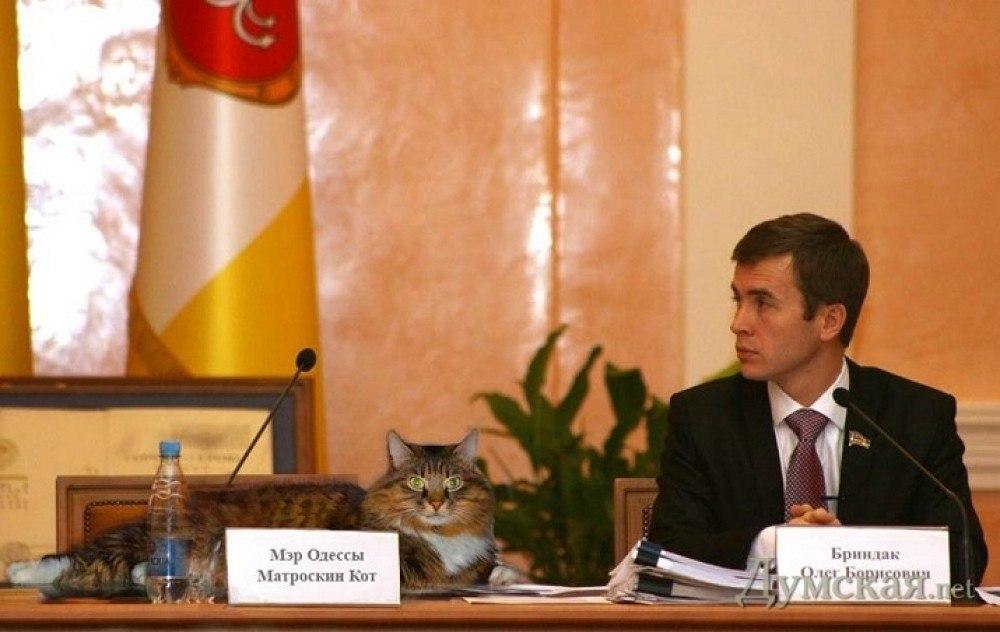 Стало известно, кто будет временно исполнять обязанности мэра Одессы - Цензор.НЕТ 7325