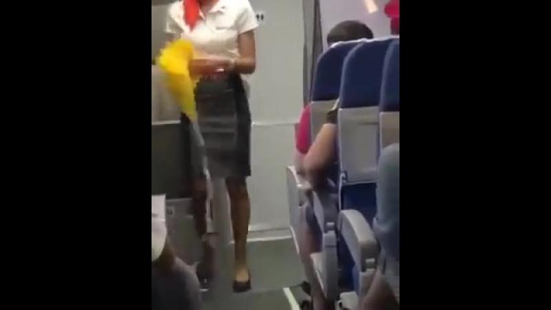 Бразильцы засмущали стюардессу