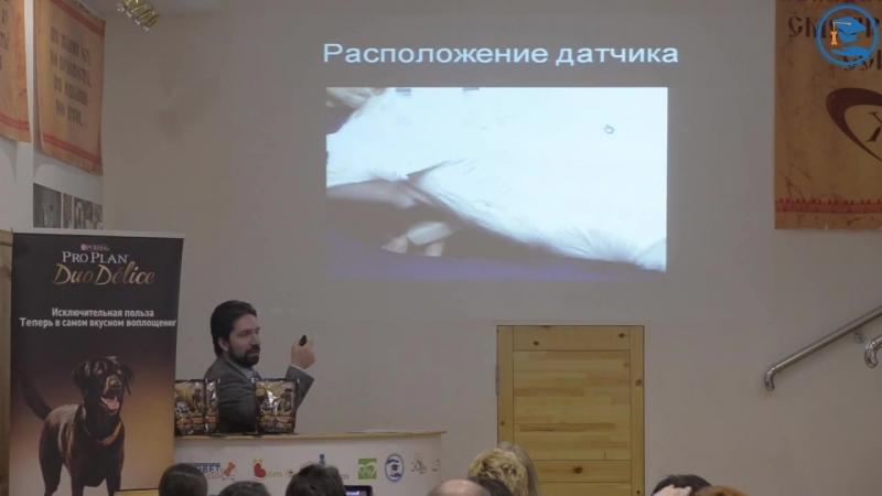 «Введение в ЭХО-кардиографию, скрининговые исследования» Бокарев А. Н. в ВЦ ЗООВЕТ