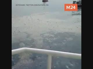 Крушение самолёта в Индонезии