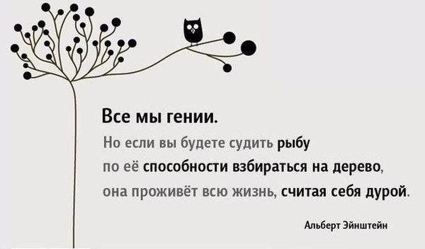 https://pp.vk.me/c635106/v635106560/757f/nSdj7jRN8_0.jpg